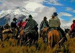Mendoza Full Day Horseback Riding Adventure com almoço. Mendoza, ARGENTINA