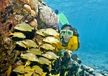 Full-Day Snorkel Extreme Adventure Tour from Riviera Maya