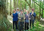 Everglades Walking Tour