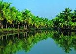 AIDA Kochi Shore Excursion: Fort Kochi and Backwater Houseboat Tour