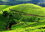 places to visit in india in august | munnar, kerala