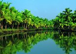 Celebrity Cruise Group Shore Excursion from Cochin Port