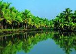 Silver Cruise Group Shore Excursion from Cochin Port