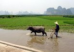 Asia - China: Guilin Private Tour: 2-Day Li River Cruise and Longji Terrace Fields