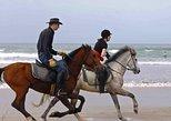 Enjoy 2 hours Horse beach ride in Agadir