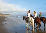 Full Day Horseback Riding in taghazout