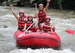 Half-Day: Bali White Water River Rafting