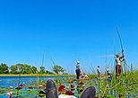 14 Days Okavango Delta & Victoria Falls to Johannesburg
