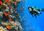 Ras Mohamed snorkeling trip from Sharm El Sheikh by Boat