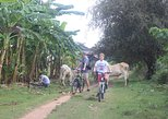 The Mekong Island Biking Tour