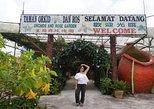 Cameron Highlands Day Tour Strawberry Park, Tea Plantation & Iskandar Waterfalls
