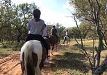 1-Hour Horseback Trail