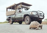 Hluhluwe Game Drive - Full day with lunch