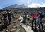 12 Days Kilimanjaro Climb via Machame Route, Luxury Safari & Charity Excursion