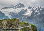Grindelwald First adventure tour with Cliff walk Zip line and Mountain cart