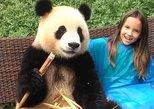 Dujiangyan Panda Base with Optional Volunteering and Photo-taking with Panda