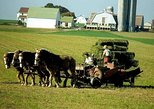 Private Tour from New York to Amish Country with Factory Outlet Shopping