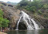Private Tour Dudhsagar Falls and Spice Plantation Goa with Guide and Entrance
