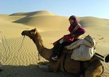 Full-Day Small-Group Camel Safari In Jaisalmer
