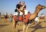 Camel Safari Day Tour in Jodhpur