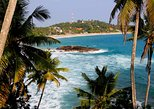 Private 8-Day Tour of Sri Lanka from Colombo