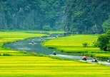 Full-Day Biking and Eco-Tour to Hoa Lu and Tam Coc from Hanoi