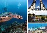 2 X Dive at Blue Lagoon Combination Heaven Gate and Tirta Gangga