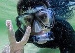Kayak Snorkel Shell Adventure Tour with Naples Kayak Adventures 3 Hours