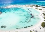 Guided Mangel Halto and Baby Beach Snorkeling Tour from Aruba