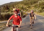 Half-Day Active Bike Tour to Fiesole & Olive oil tasting