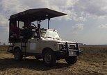 2 Days safari to Mikumi National Park