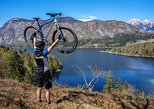Bohinj Valley Bike Adventure from Bled