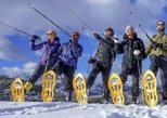 Bohinj Valley Winter Snowshoe Hike