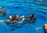 PADI Discover Scuba diving from Chania (beginners)