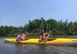 EASY PADDLE IN MANGROVE FOREST