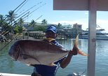 Fishing Charters Private - Reef, Deep Sea & Game