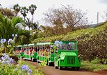 The Tropical Express at Maui Tropical Plantation