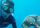 Tour To Cano Island Biological Reserve By Costa Rica Te Enamora
