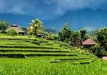 Cosmo Bali Package Tour: Bedugul, Lunch, Jatiluwih Rice Terrace, Batukaru Temple