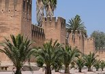 Tiout Oasis and Taroudant Guided Day Tour from Agadir