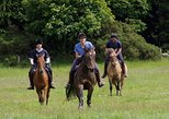 Fullday Horse Riding in Sredna Gora