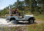 Jeep Safari Program