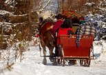 viator krakow | horse sleigh ride in the polish countryside, private tour from krakow