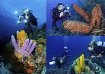 UNDERWATER PHOTOGRAPHY COURSES AND WORKSHOPS
