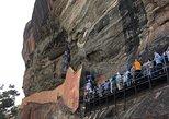 Day tour to Sigiriya rock fortress & Dambulla Golden rock cave temple