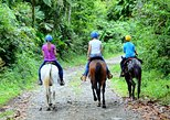 Horseback Ride to La Fortuna Waterfall
