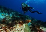Double dive package in Cozumel - Scuba dive in the Mexican Caribbean