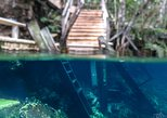Snorkel in the mystical cenotes of the Riviera Maya - Day tour with lunch