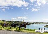 Bayview Scenic Horseride
