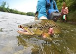 Half-Day Denver Fly Fishing Tour